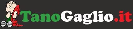 Gaetano Gaglio – il sito